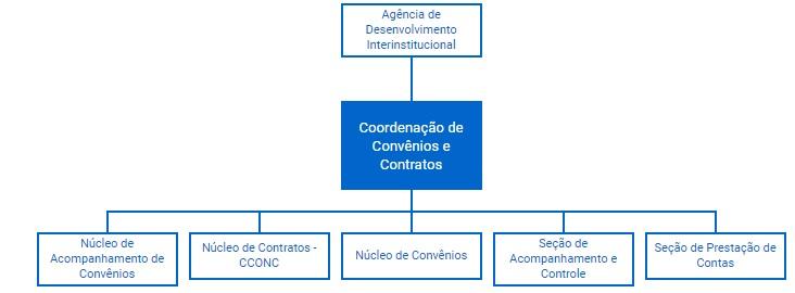 Organograma CCONC
