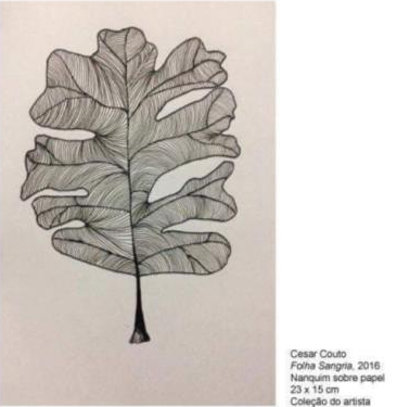 Desenho de uma folha e suas ramificações feito com o pigmento Nanquim