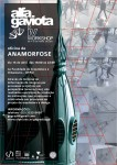 oficina anamorfose