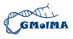 Logo  Genética Molecular e Melhoramento Animal