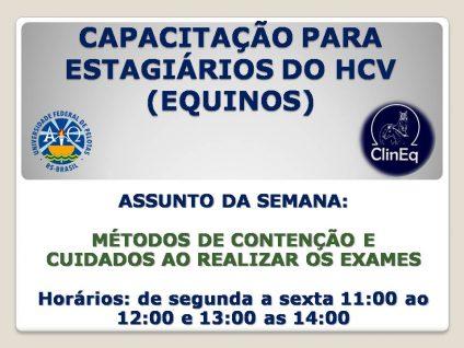 CAPACITAÇÃO PARA ESTAGIÁRIOS DO HCV (EQUINOS)
