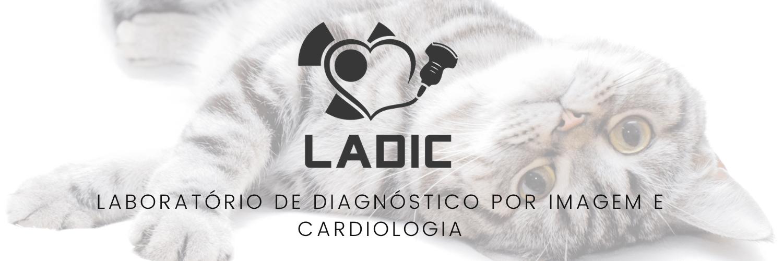 Logo LADIC - Laboratório de Diagnóstico por Imagem e Cardiologia