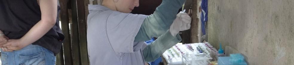 Doutoranda Carina auxiliando no processo de coleta.