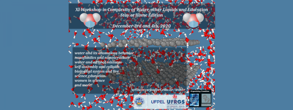 Workshop in Complexity of Water, Other Liquids and Education